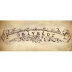 ООО «Сальвадор и Ко»